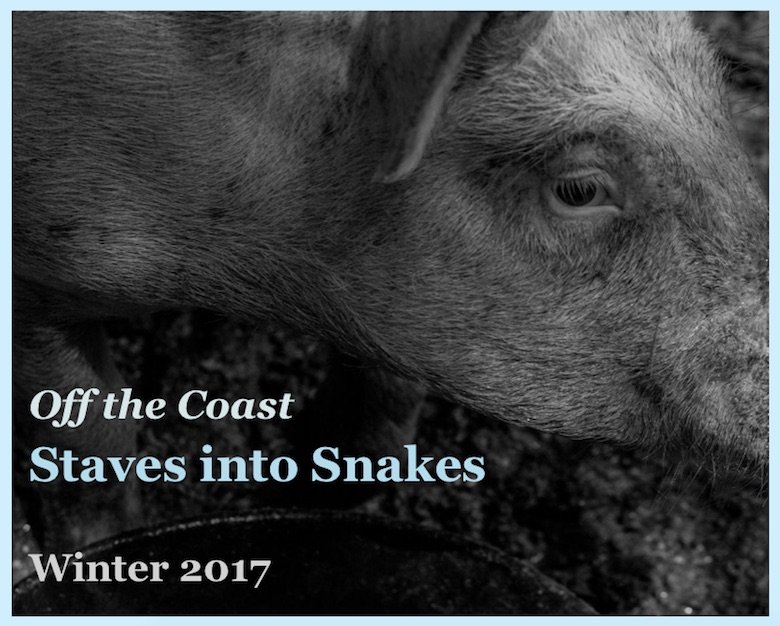 The cover is a black and white closeup of a pig, featuring the pig's face and shoulder. The contrast of the photo brings out the texture of the pig's hair. Bold text over the image reads: Off the Coast Staves into Snakes Winter 2017