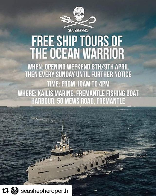 #Repost @seashepherdperth ・・・ Join us for free ship tours of the @myoceanwarrior in the Fremantle Fishing Boat Harbour THIS WEEKEND 8th and 9th April from 10am-4pm.  We will have kids activities, merchandise, outreach and much more happening on the day.  #oceanwarrior #shiptours #Fremantle #seashepherdperth