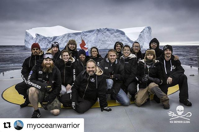 Yesterday morning, March 8th, the @myoceanwarrior docked at Strategic Marine in Henderson, Western Australia after our maiden Antarctic voyage as part of Operation Nemesis, Sea Shepherd's 11th whale defense campaign. #SeaShepherd #OpNemesis (📷 Simon Ager)
