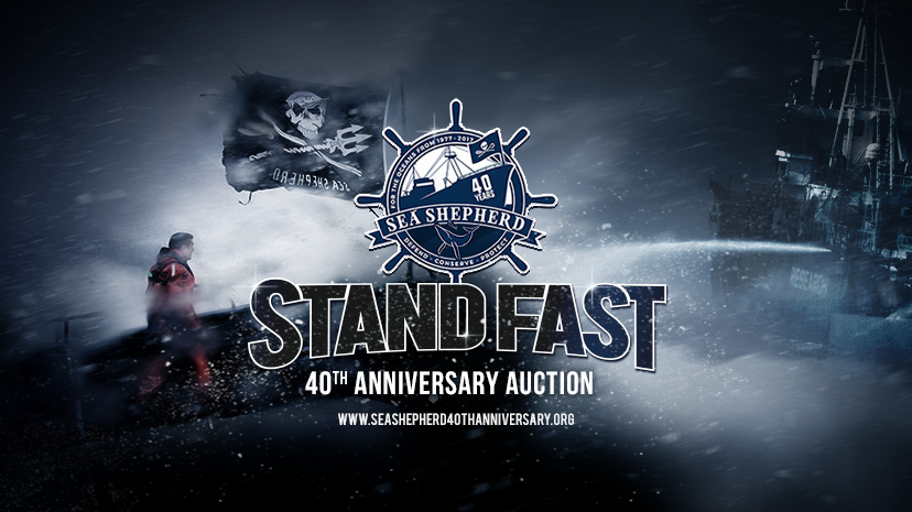 AUCTIOn        BID ON some                exclusive      MEMORABILIA from      ouR history and    support our fight       for the oceans!