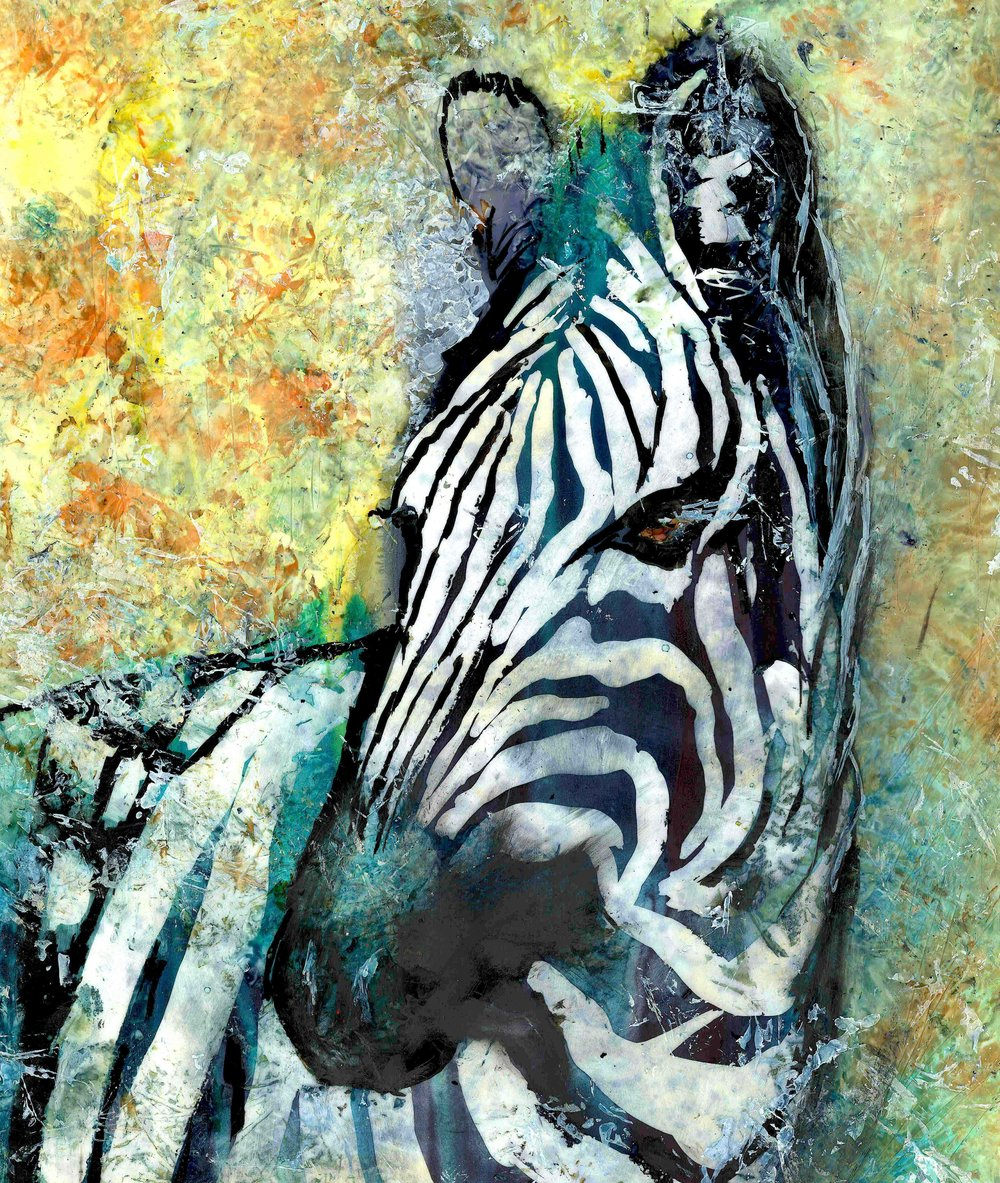 Abstract Zebra.jpg