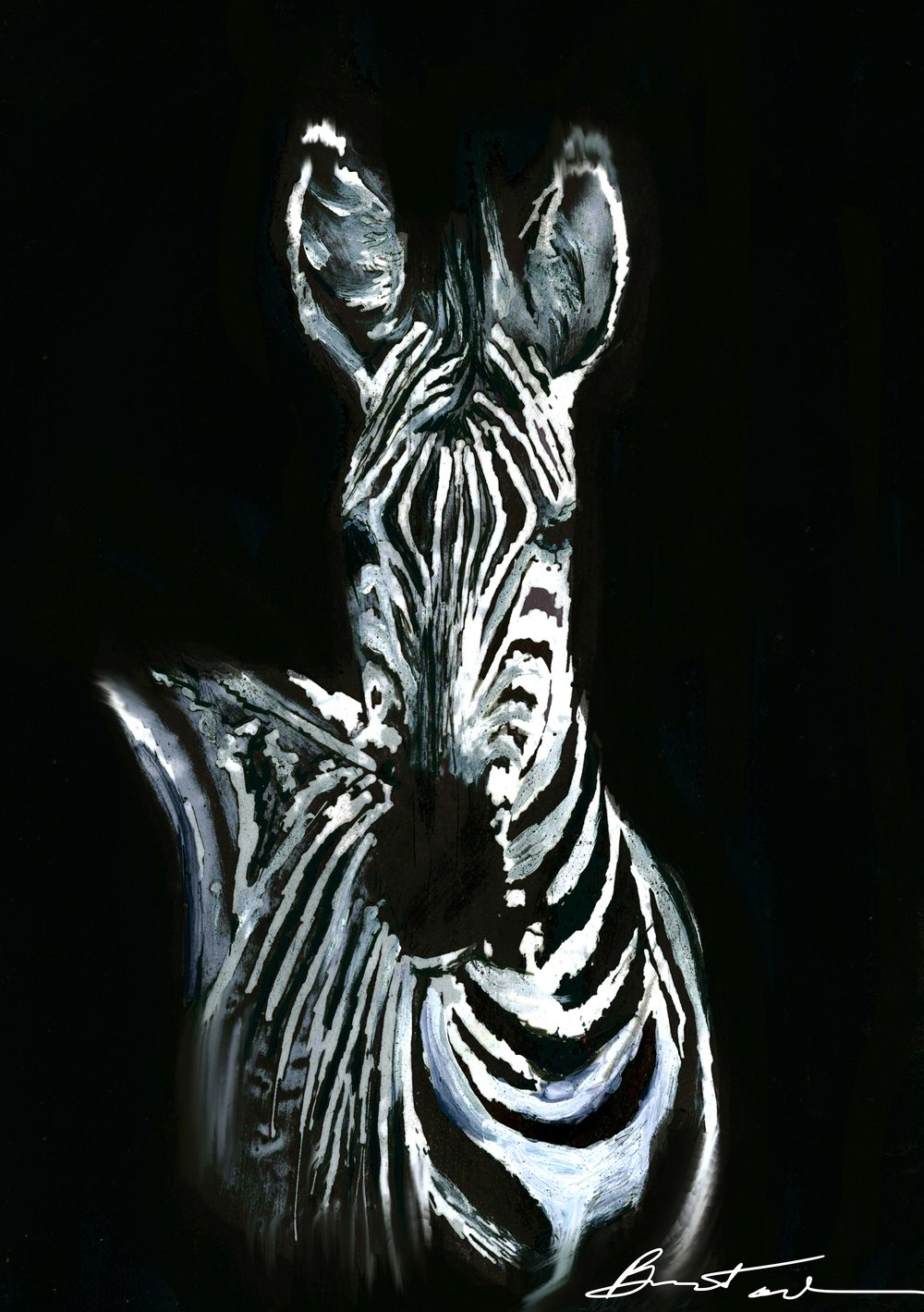 Midnight Zebra (1).jpg