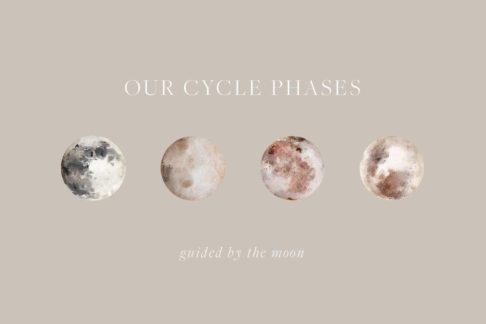 Cycle-Phases.jpg