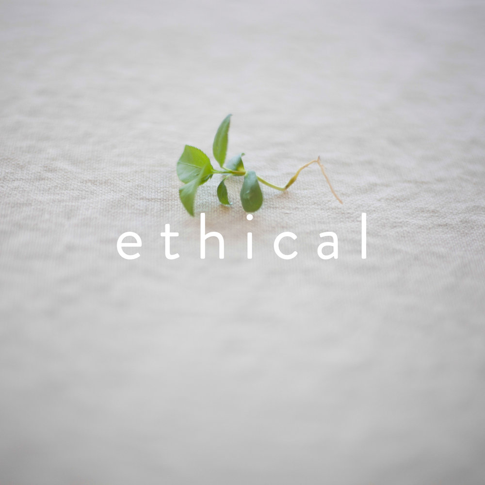 8-ethical.jpg