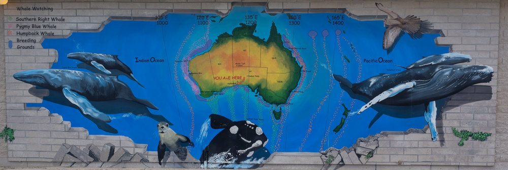 mural at Nullarbor Roadhouse, just 30km from Head of Bight