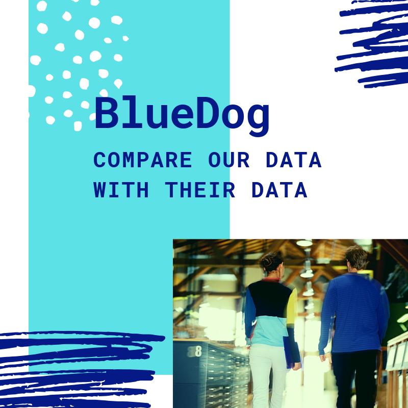 BlueDog Group Blog.png