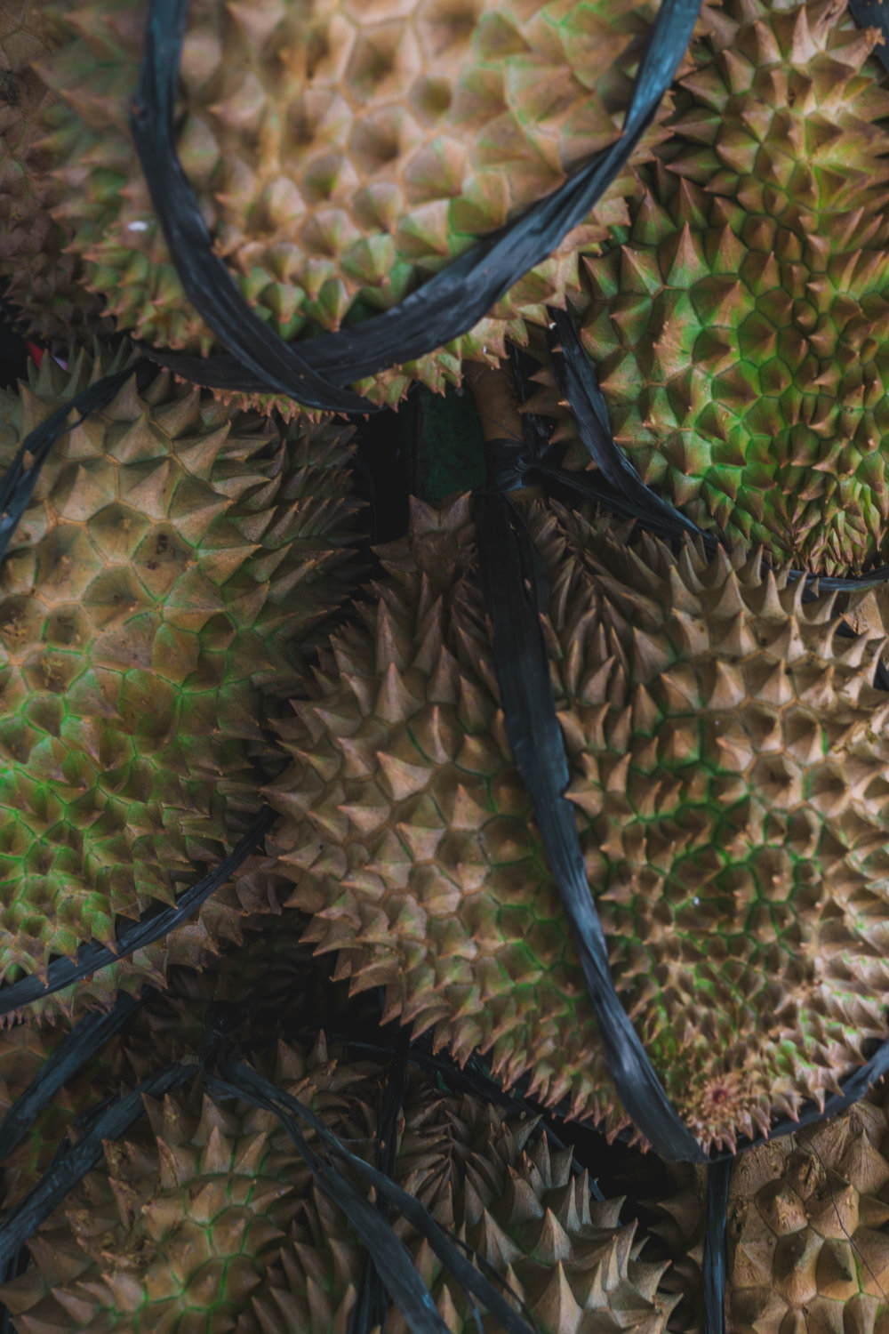 Durian fruit, the Philippines