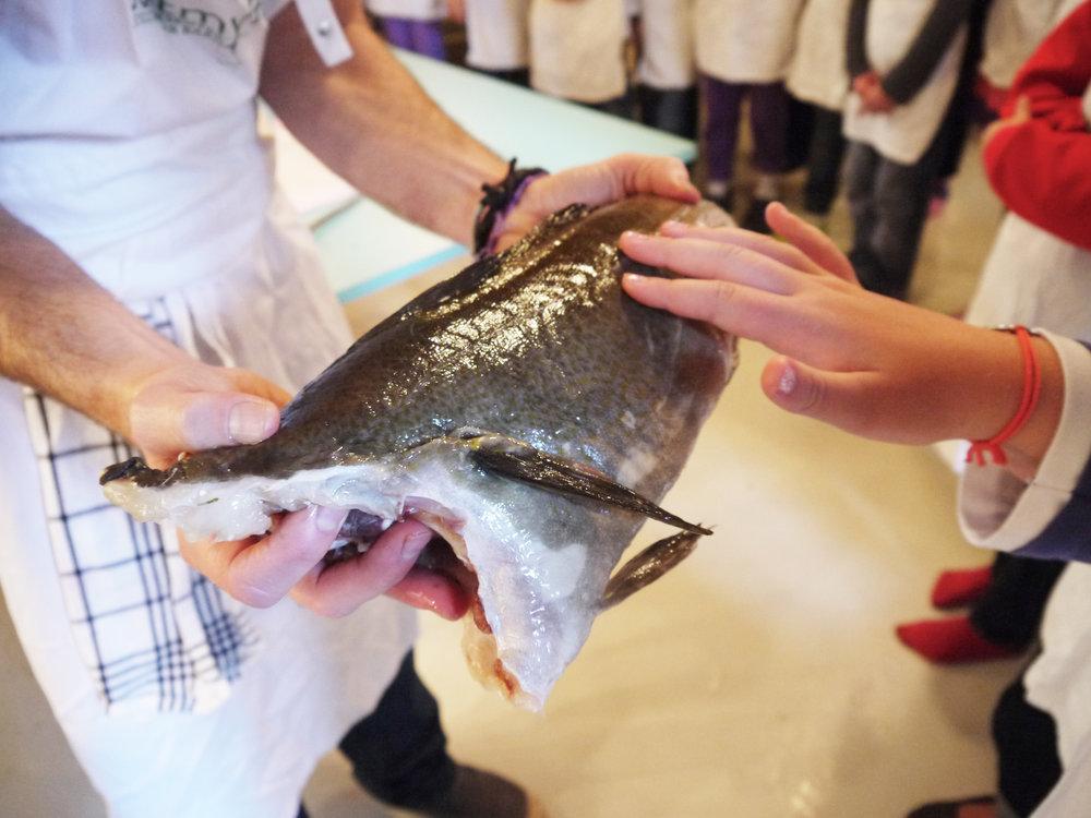Barn kjenner på fisk.jpg