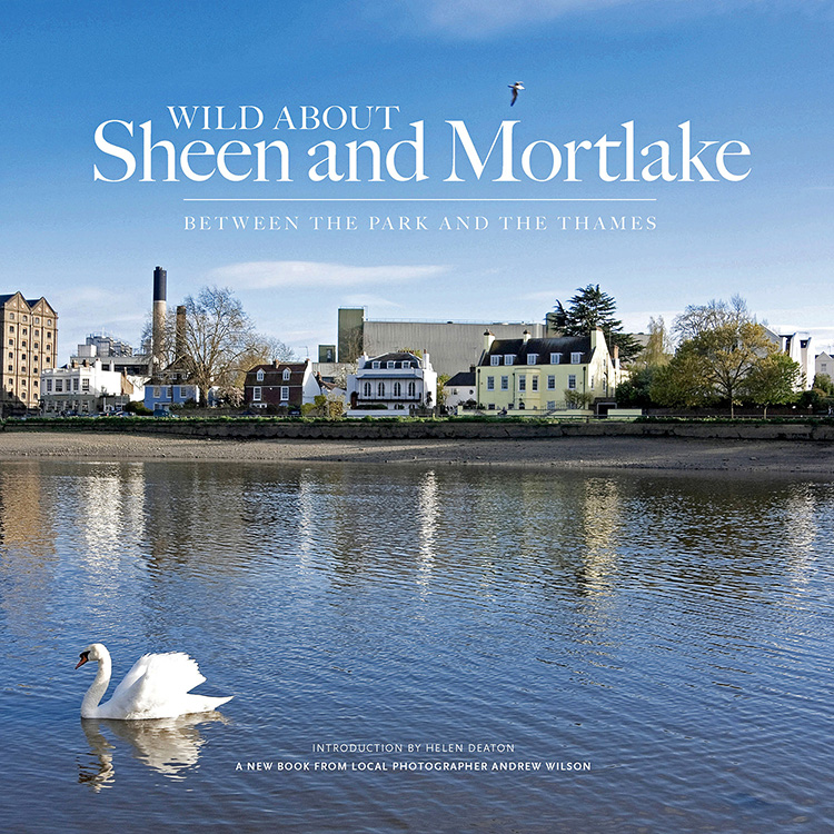 Wild About Sheen-Mortlake_Cover_1 for the web.jpg