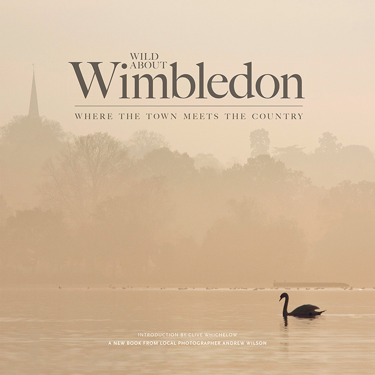 Wild about Wimbledon Front Cover for the web.jpg