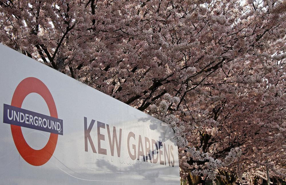Kew Gardens station WR.jpg