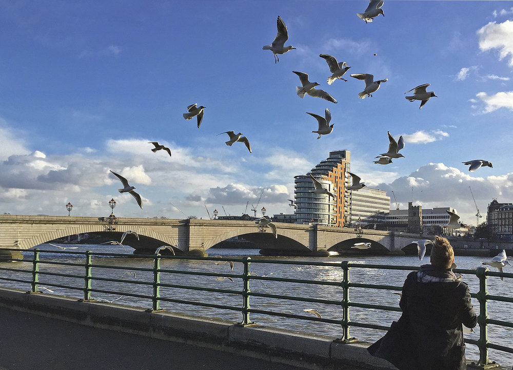 Putney Wharf from Fulham WR.jpg