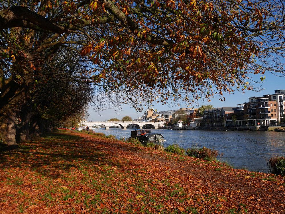 Kigston Bridge in autumn.jpg
