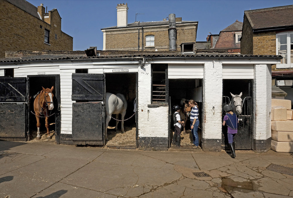 Wimbledon Village Stables.jpg