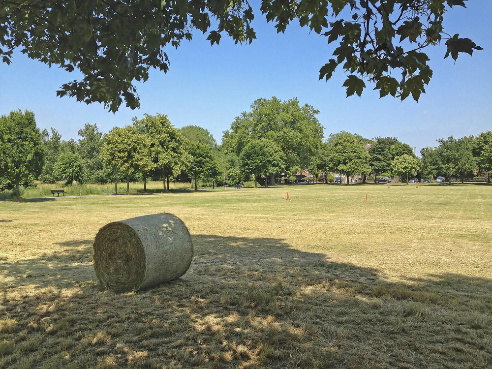 Wandsworth Common East WR.jpg