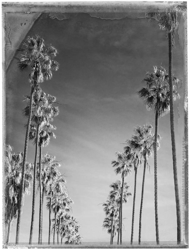 Christopher Thomas, Bay Street, Santa Monica, 2015 -