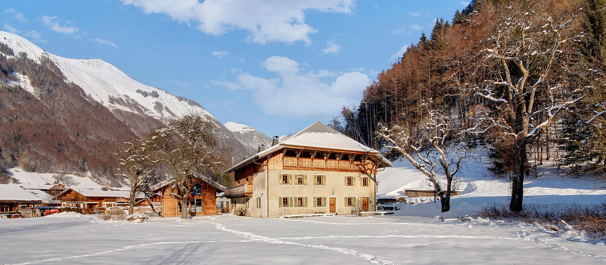 la ferme du lac vert: boutique hotel & ski chalet in morzine