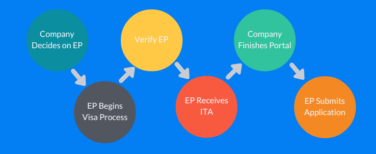 The Visa Process Flow.