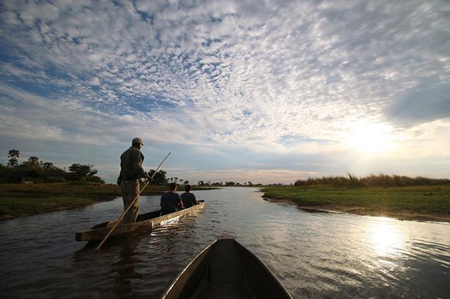 In Botswana's Okavango Delta, getting out and exploring by boat is a must! Water based safaris by traditional mokoro canoes allow for an entirely different perspective. 📷: @jesuislapolice