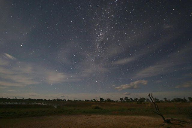 With no light pollution in the Okavango, the stargazing is nothing short of spectacular. 📷 @jesuislapolice