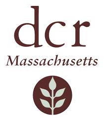 DCR new.jpg