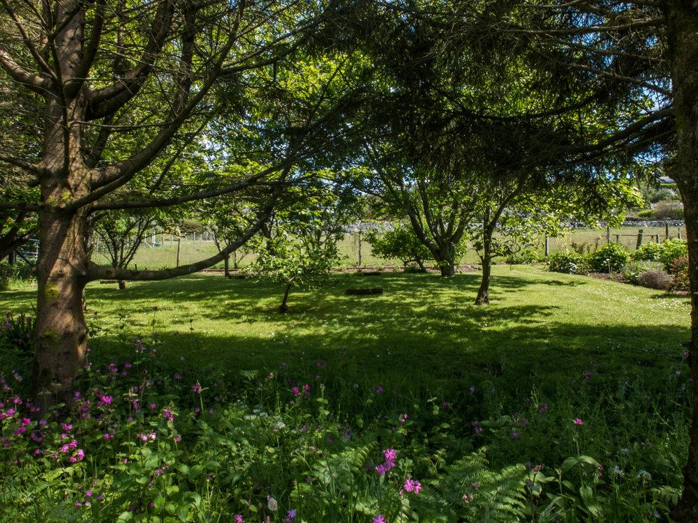 Hafod Wen Gardens