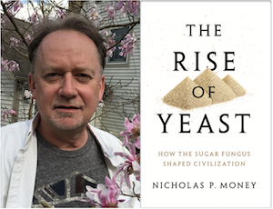 The Rise of Yeast: How the Sugar Fungus Shaped Civilization -