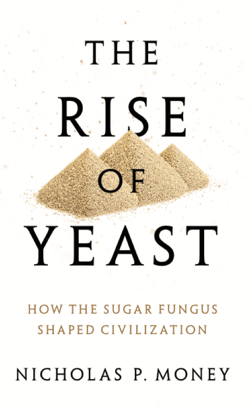 The Rise of Yeast: How the Sugar Fungus Shaped Civilization