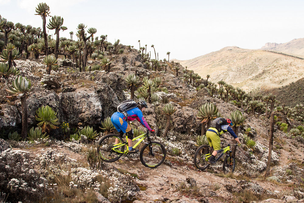 Mt. Elgon MTB expedition. - Ride down the largest freestanding volcano in the world.