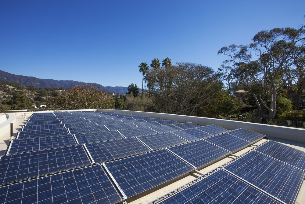 Zoo Solar Array.jpg