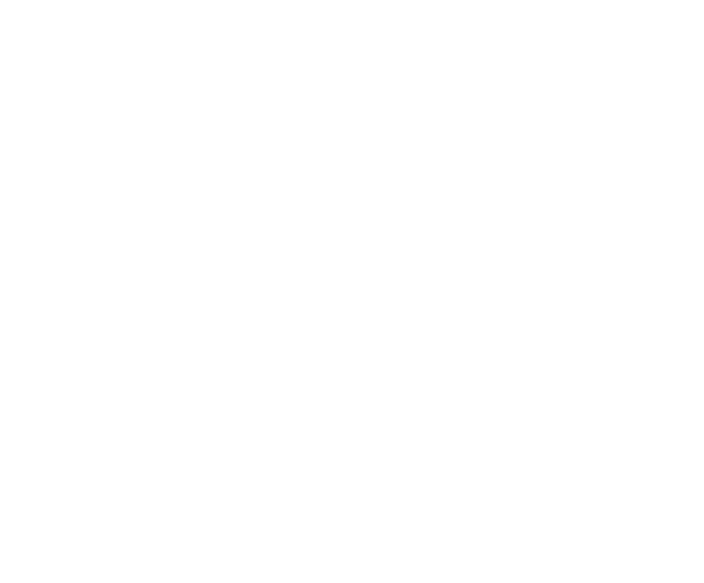 nimbus_lightning_logo_bugonly_white.png