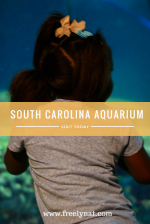South Carolina Aquarium.png