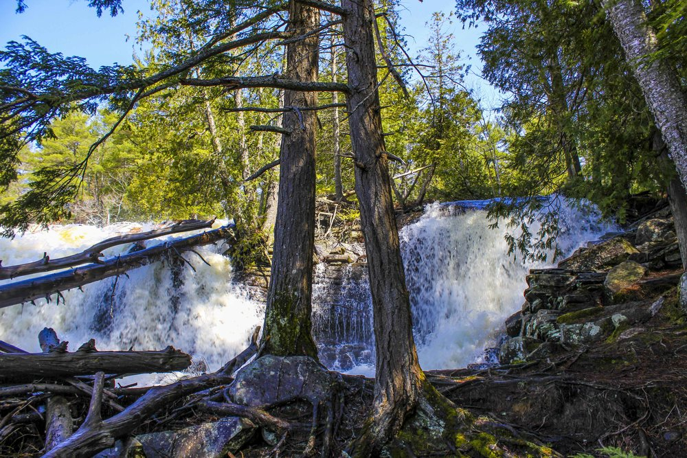 Waterfalls in Muskoka