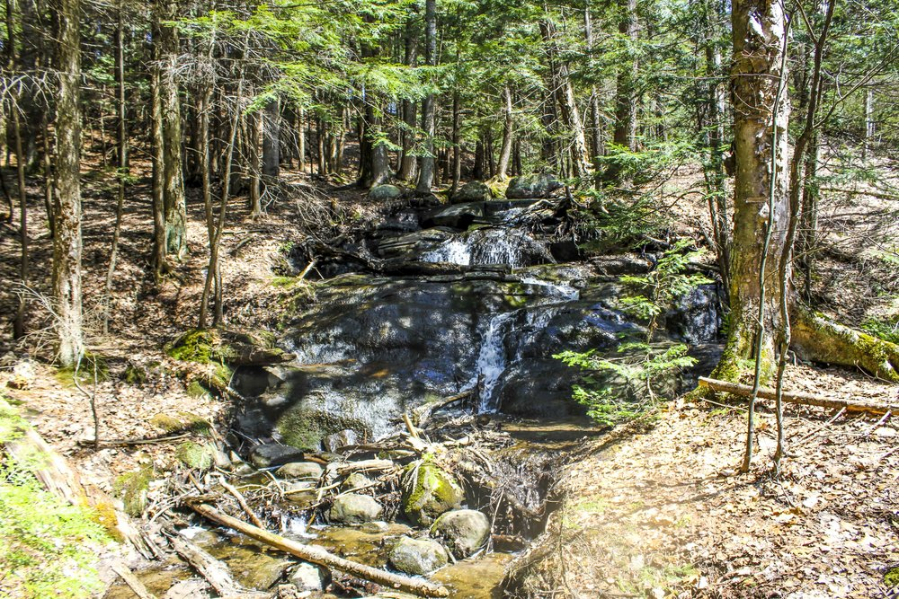 Hiking Trails in Muskoka