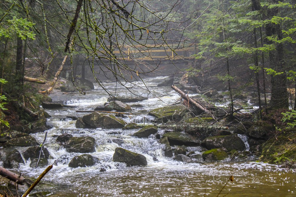 Kealls Falls Muskoka