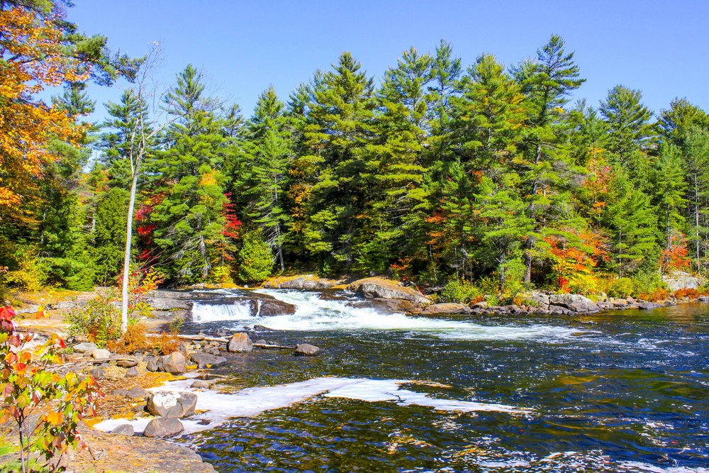 Things to do in Muskoka