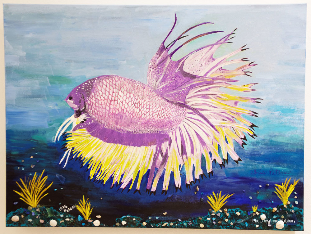 Iris Peters - Purple Beta Fish