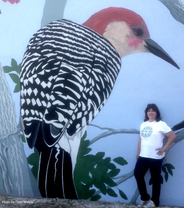 carol_woodpecker.jpg