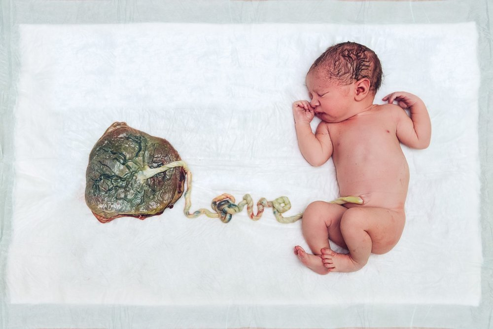 "www.facebook.com/laurabeatrizphoto true knot in the ""O""... True love"