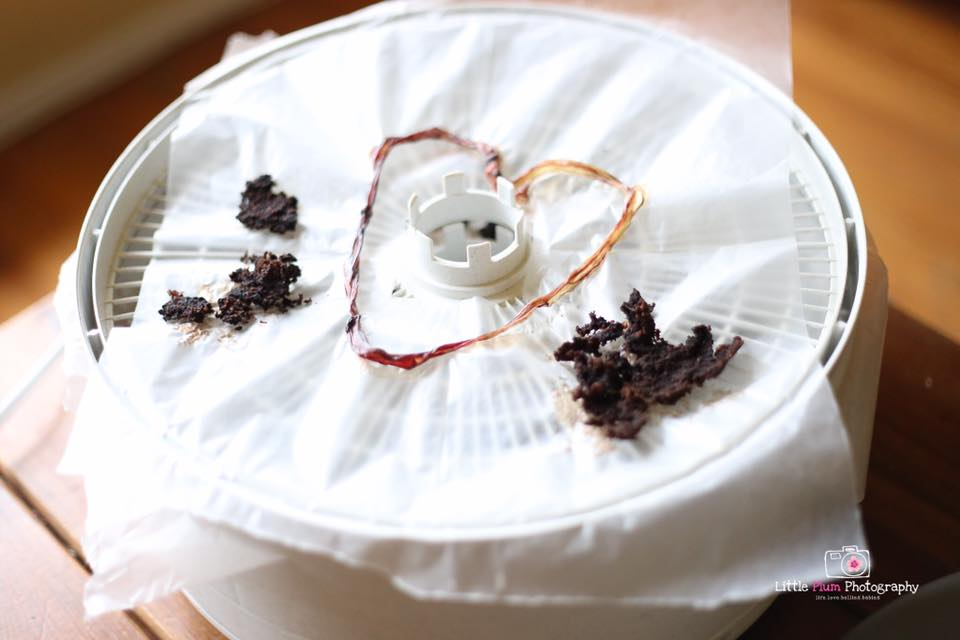 I photographed a placenta encapsulation process ❤  Little Plum Photography by Stephanie Entin   www.littleplumphoto.com