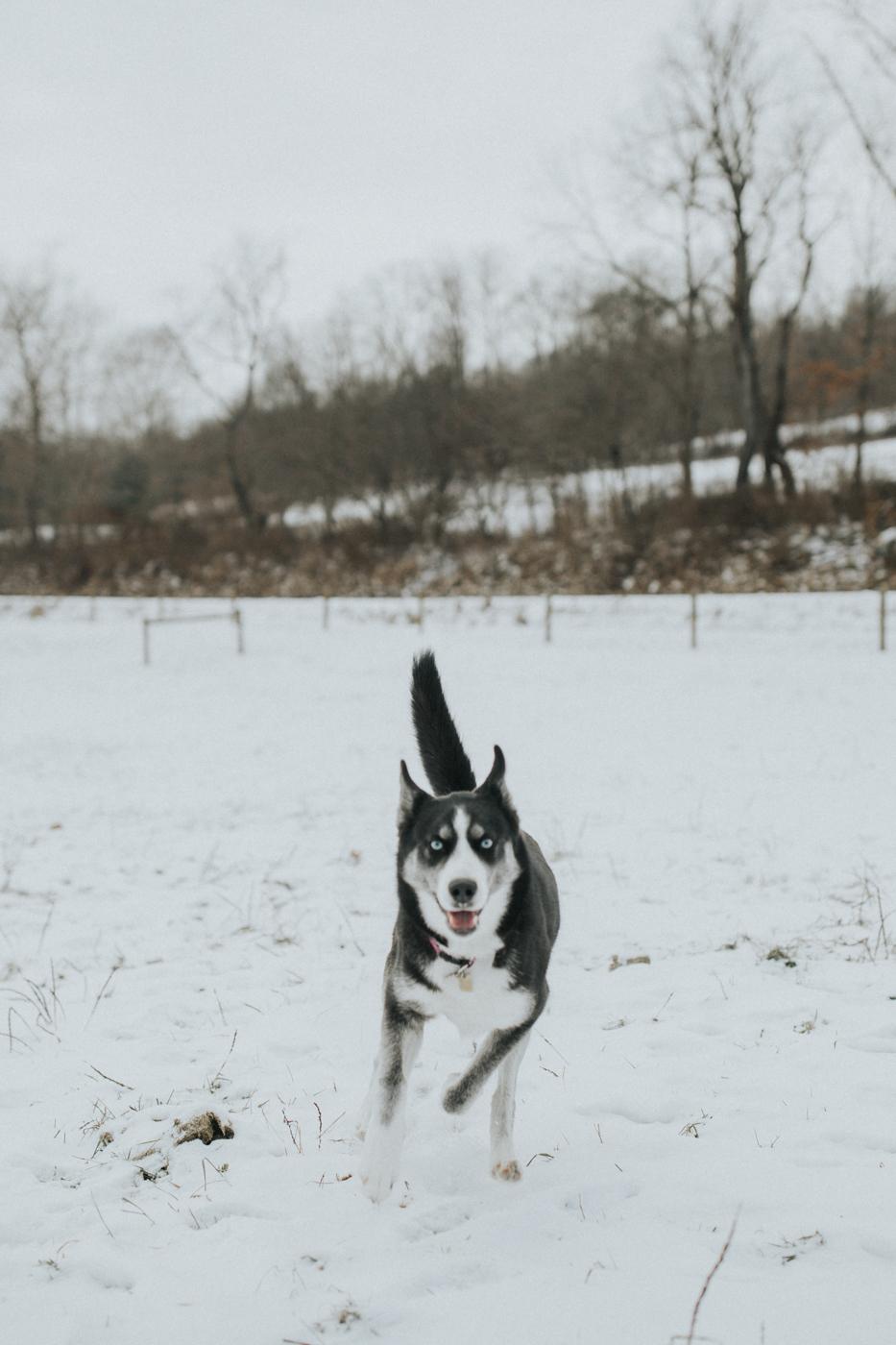 ashley-portraits-oakwood-photo-video-9.jpg