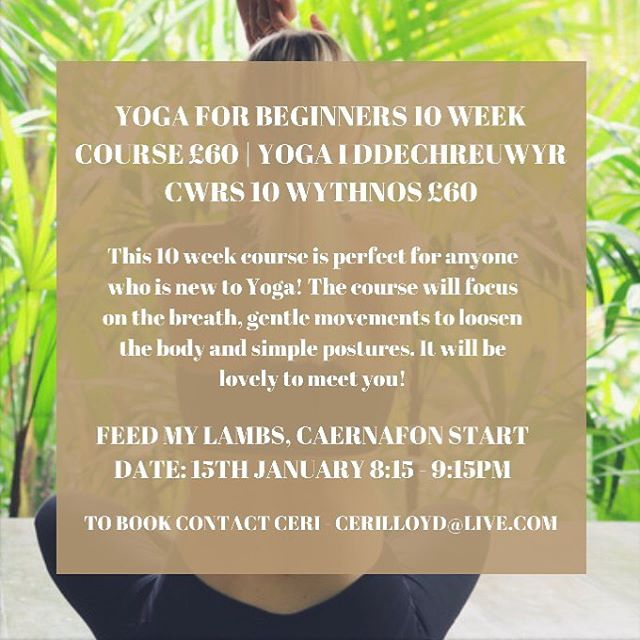 Have you seen our latest post where we share our last minute Holiday gift ideas?! You'll find gifts that are perfect for your conscious friends and loved ones,  including services from ourselves like this 10 week Yoga course Ceri is teaching in January! For more information on this and Natalie's services get in touch and remember to click the link in our bio to see our most recent post ❄️
