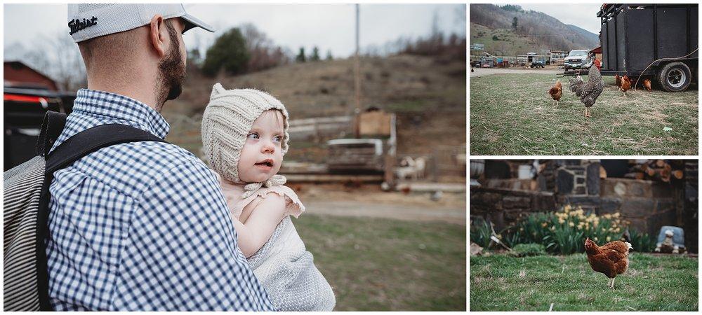 3M Livestock | Boone, NC Family Photographer