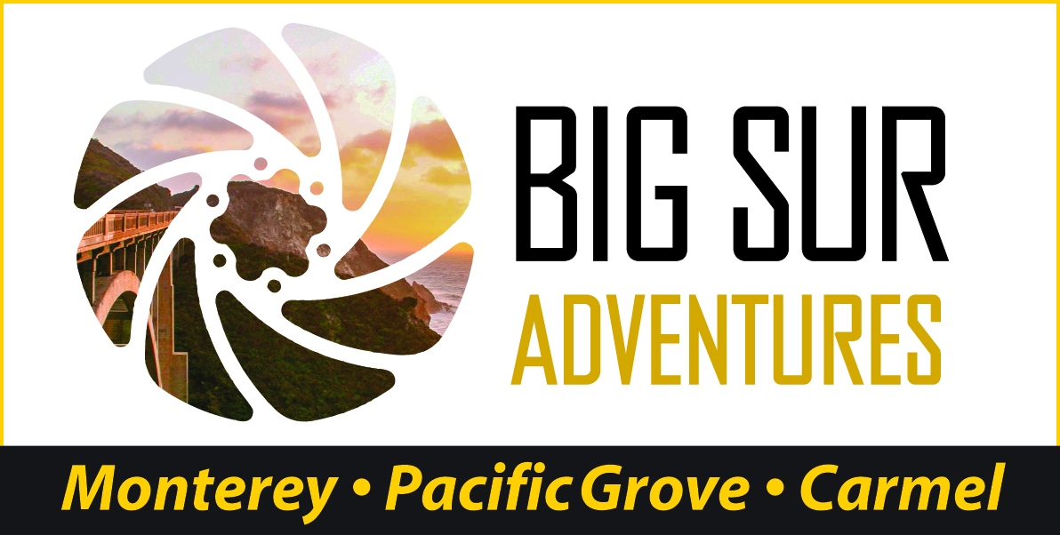 Big Sur Adventures Tours and Bike Rentals Monterey
