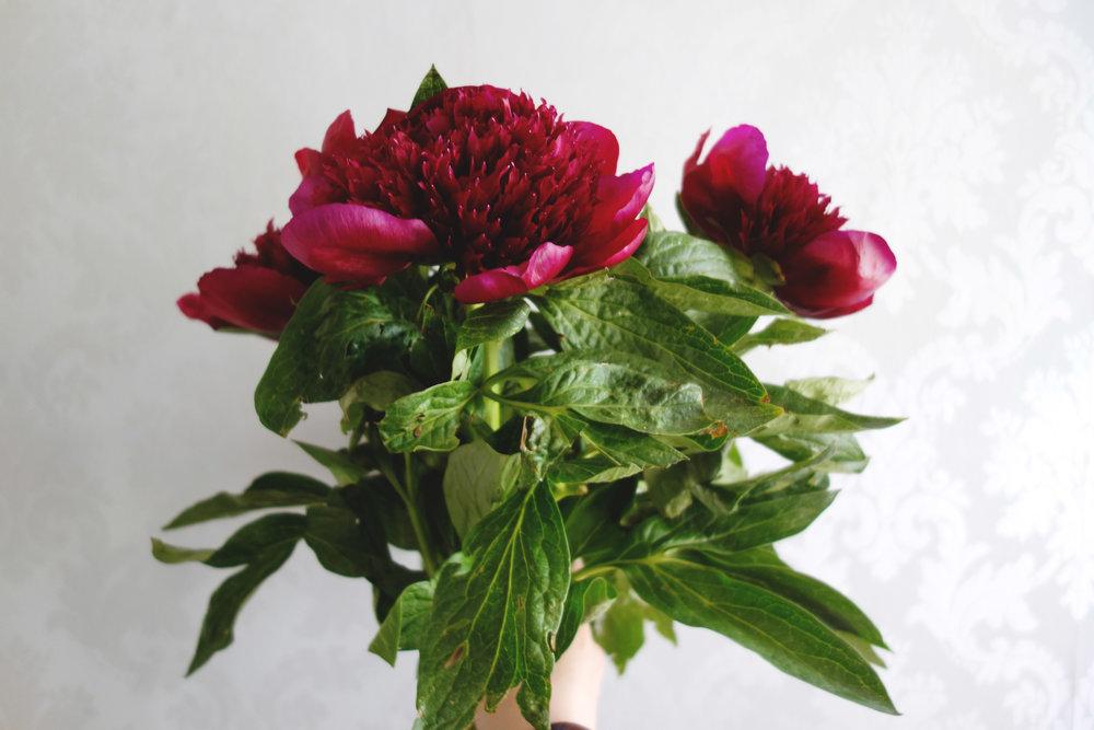 Flowers04.jpg
