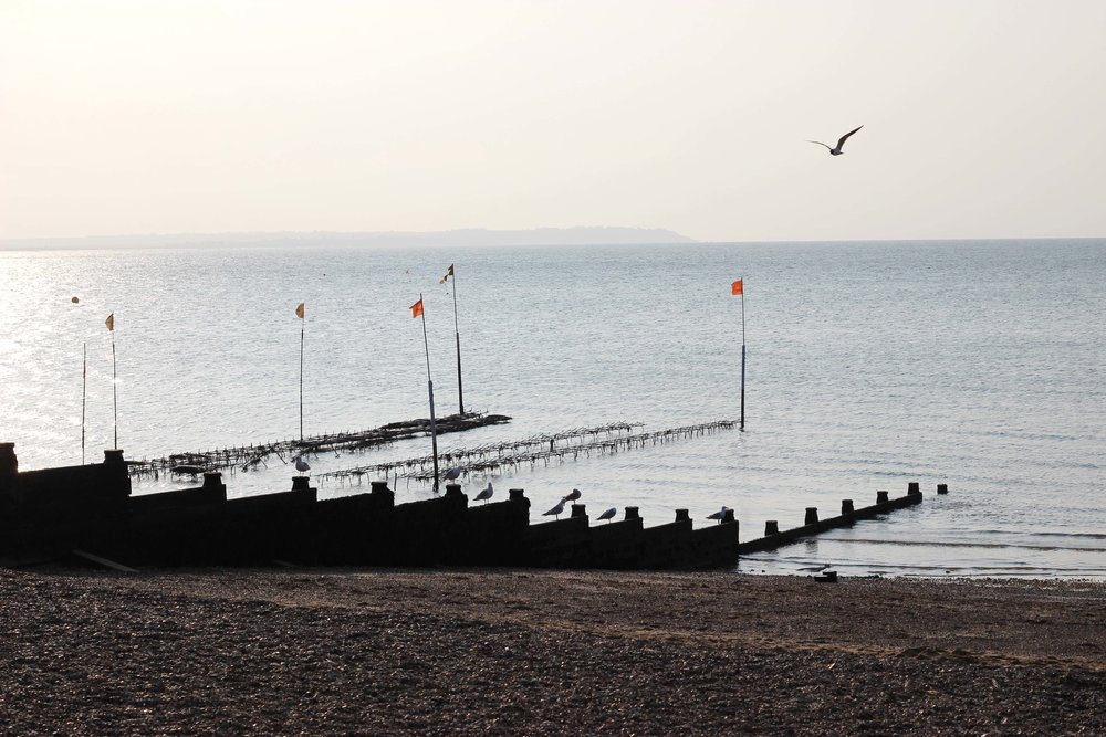 Whitstable14