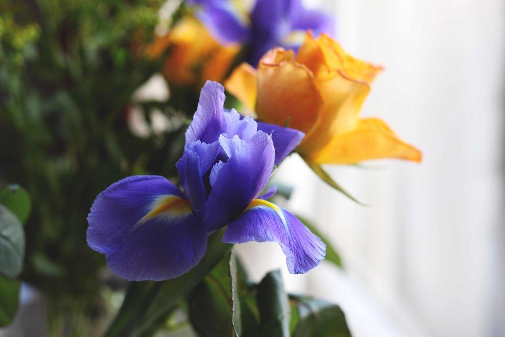 Flowers06.jpg