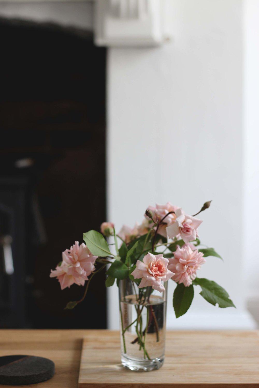 Roses08.jpg