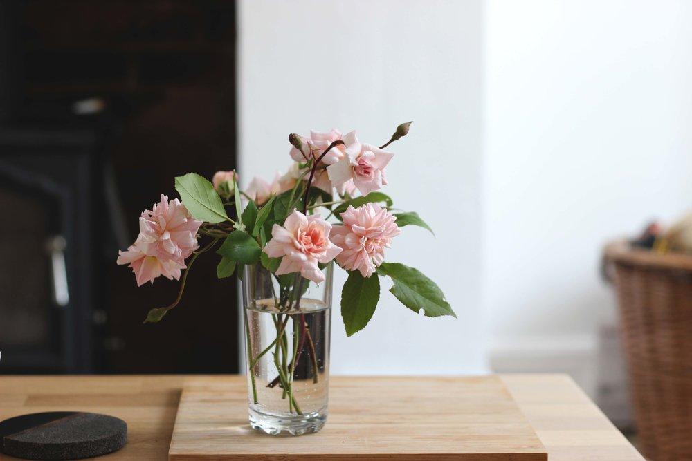 Roses17.jpg