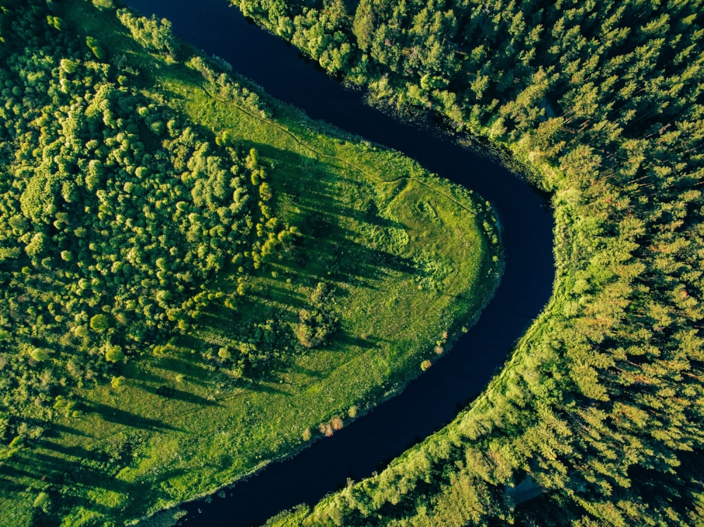 aerial-view-of-the-forest-river-in-summer-PFYN769.jpg
